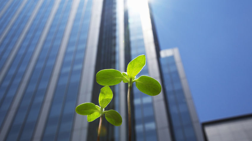 9 consigli su come risparmiare energia in azienda