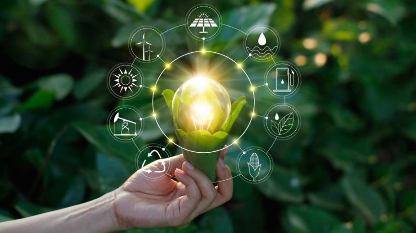 Le fonti rinnovabili di energia sono tutte gratuite?